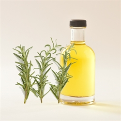 Picture of ROSEMARY OIL